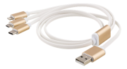 Epzi 3-in-1 Cable Lightning/Micro/USB-C - 1 m - Gold